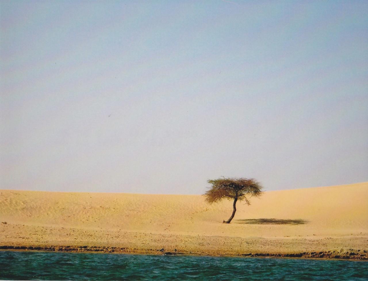 le désert à Karkadjane