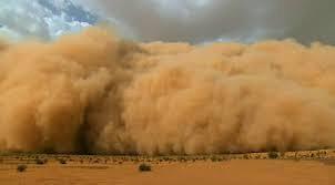 D biskra une tempete de sable ravage 20 des cultures sous serre a ras el miad e937a